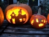 halloween-pumpkin-competition